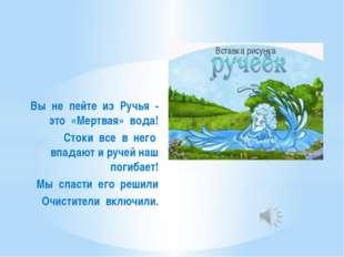 Вы не пейте из Ручья - это «Мертвая» вода! Стоки все в него впадают и ручей н