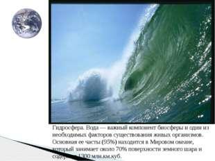 Гидросфера. Вода — важный компонент биосферы и один из необходимых факторов с