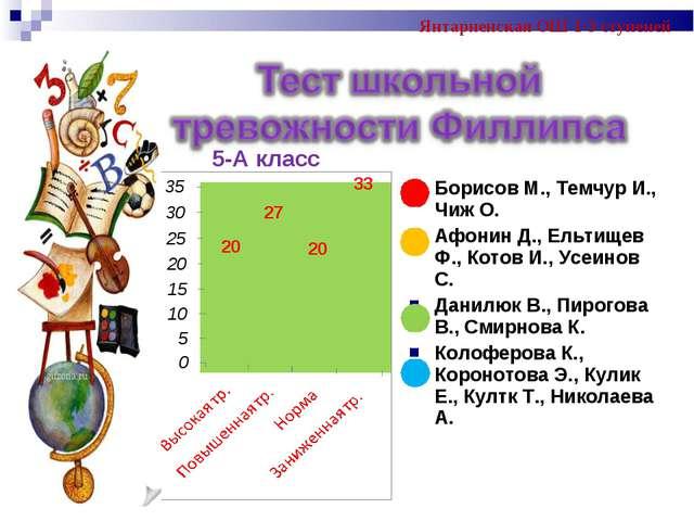 5-А класс Янтарненская ОШ 1-3 ступеней Борисов М., Темчур И., Чиж О. Афонин Д...