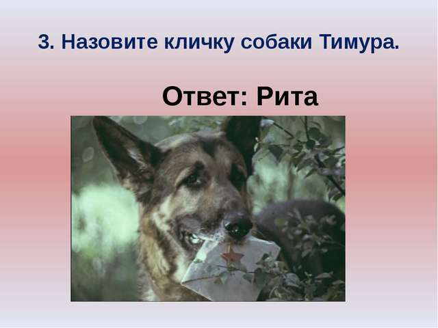 3. Назовите кличку собаки Тимура. Ответ: Рита