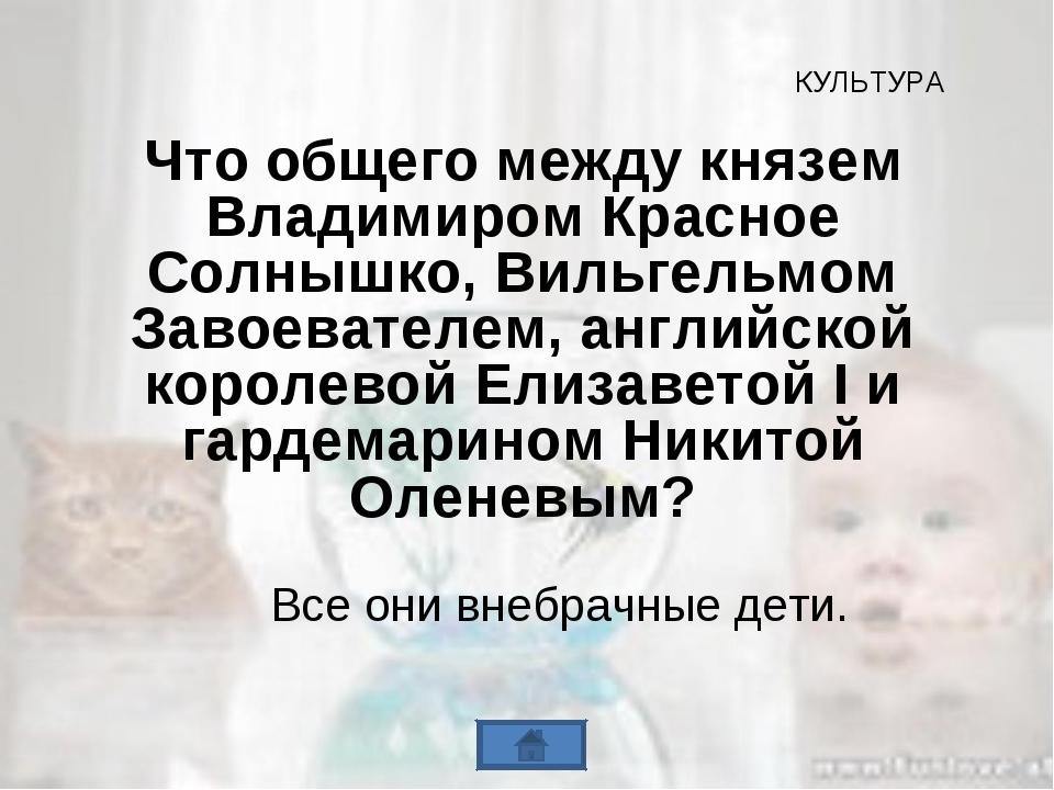 Что общего между князем Владимиром Красное Солнышко, Вильгельмом Завоевателем...