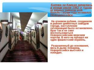Битва за Кавказ началась в конце июля 1942 г. Одним из важных районов этой б