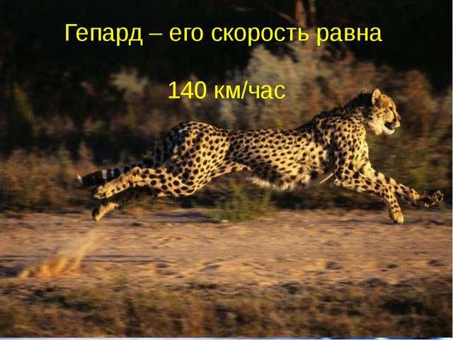 Гепард – его скорость равна 140 км/час