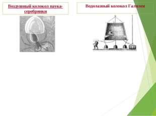 Водолазный колокол Галилея Воздушный колокол паука-серебрянки