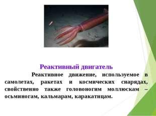 Реактивный двигатель Реактивное движение, используемое в самолетах, ракетах и