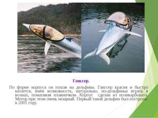 Глиссер. По форме корпуса он похож на дельфина. Глиссер красив и быстро ката