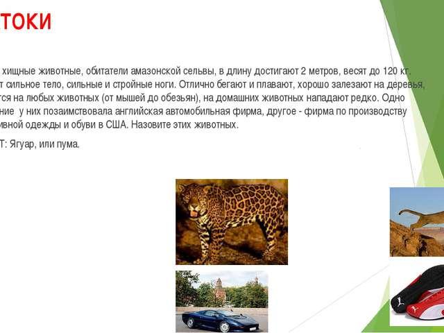ЗНАТОКИ 1. Эти хищные животные, обитатели амазонской сельвы, в длину достигаю...