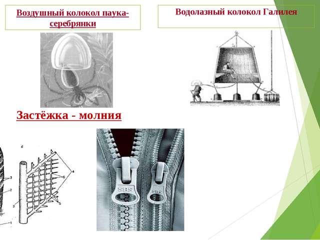 Водолазный колокол Галилея Воздушный колокол паука-серебрянки Застёжка - молния