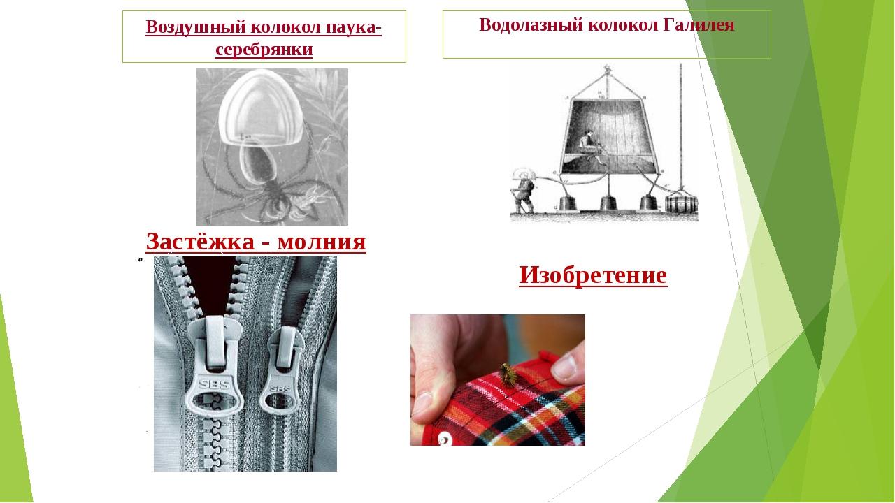 Водолазный колокол Галилея Воздушный колокол паука-серебрянки Застёжка - молн...