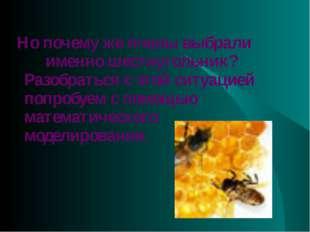 Но почему же пчелы выбрали именно шестиугольник? Разобраться с этой ситуацие