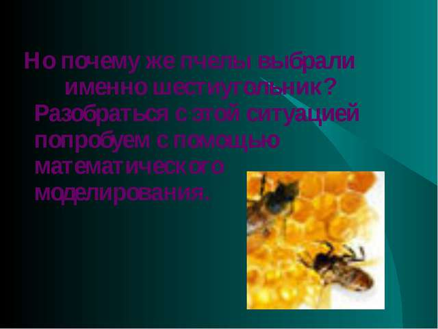 Но почему же пчелы выбрали именно шестиугольник? Разобраться с этой ситуацие...