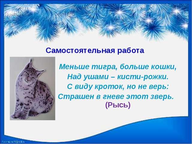 Самостоятельная работа Меньше тигра, больше кошки, Над ушами – кисти-рожки. С...