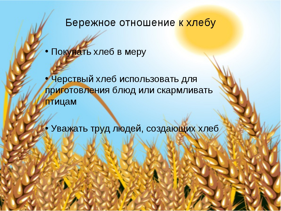 Бережное отношение к хлебу Покупать хлеб в меру Черствый хлеб использовать д...