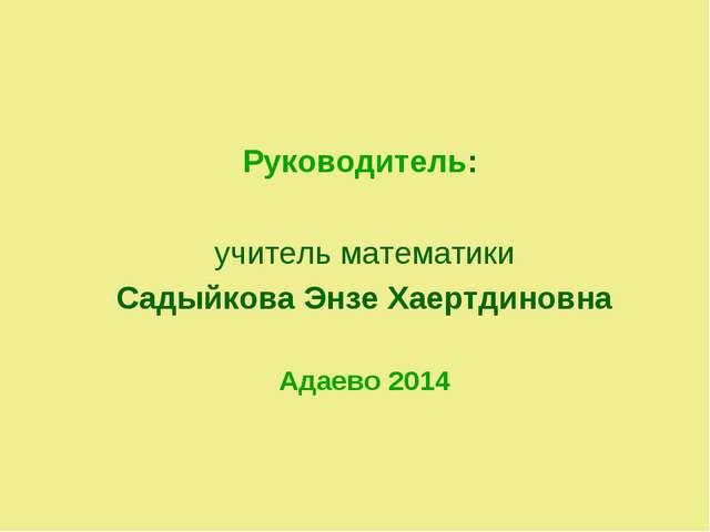 Руководитель: учитель математики Садыйкова Энзе Хаертдиновна Адаево 2014