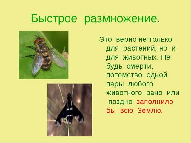Быстрое размножение. Это верно не только для растений, но и для животных. Не...