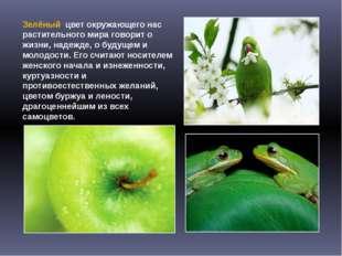 Зелёный цвет окружающего нас растительного мира говорит о жизни, надежде, о б