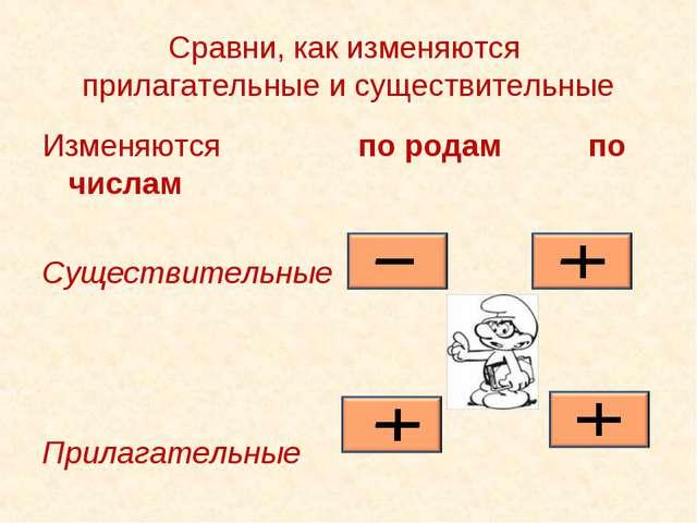 Сравни, как изменяются прилагательные и существительные Изменяются по родам...