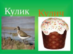 Кулик Кулич