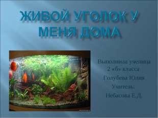Выполнила ученица 2 «б» класса Голубева Юлия Учитель: Небасова Е.Д.