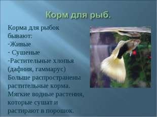 Корма для рыбок бывают: Живые Сушеные Растительные хлопья (дафния, гаммарус)