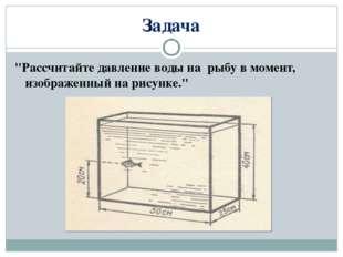 """Задача """"Рассчитайте давление воды на рыбу в момент, изображенный на рисунке."""""""