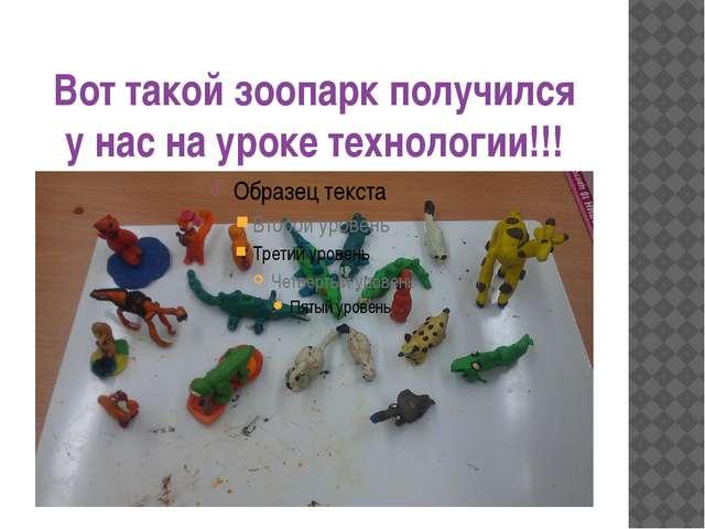 Вот такой зоопарк получился у нас на уроке технологии!!!