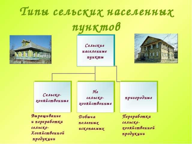 Типы сельских населенных пунктов Выращивание и переработка сельско- Хозяйстве...