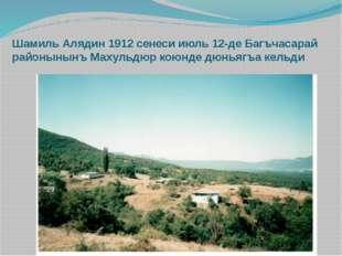 Шамиль Алядин 1912 сенеси июль 12-де Багъчасарай районынынъ Махульдюр коюнде