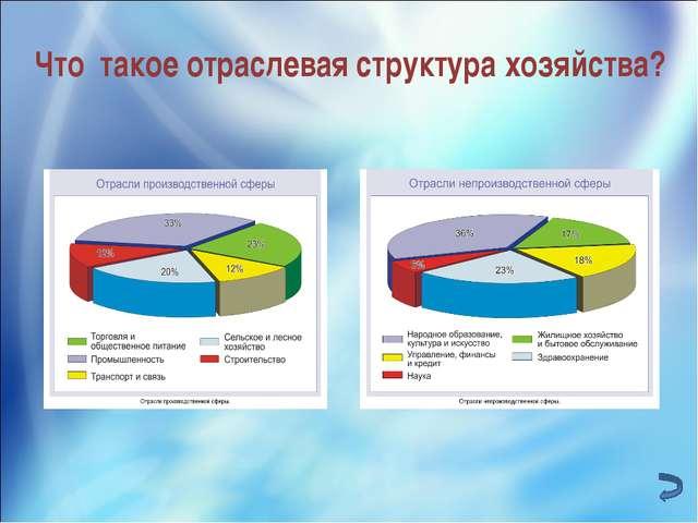 Что такое отраслевая структура хозяйства?