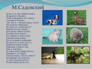 М.Садовский Я как-то в дом принёс щенка Бездомного бродягу, Чтоб подкормить е