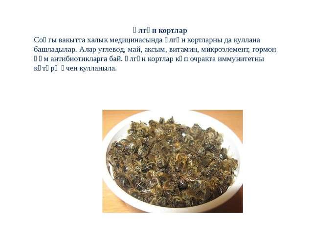 Үлгән кортлар Соңгы вакытта халык медицинасында үлгән кортларны да куллана ба...