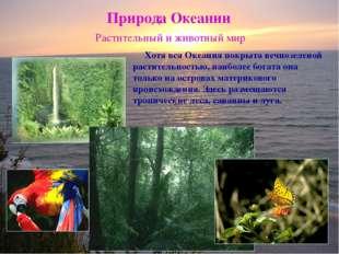 Природа Океании Растительный и животный мир Хотя вся Океания покрыта вечнозел