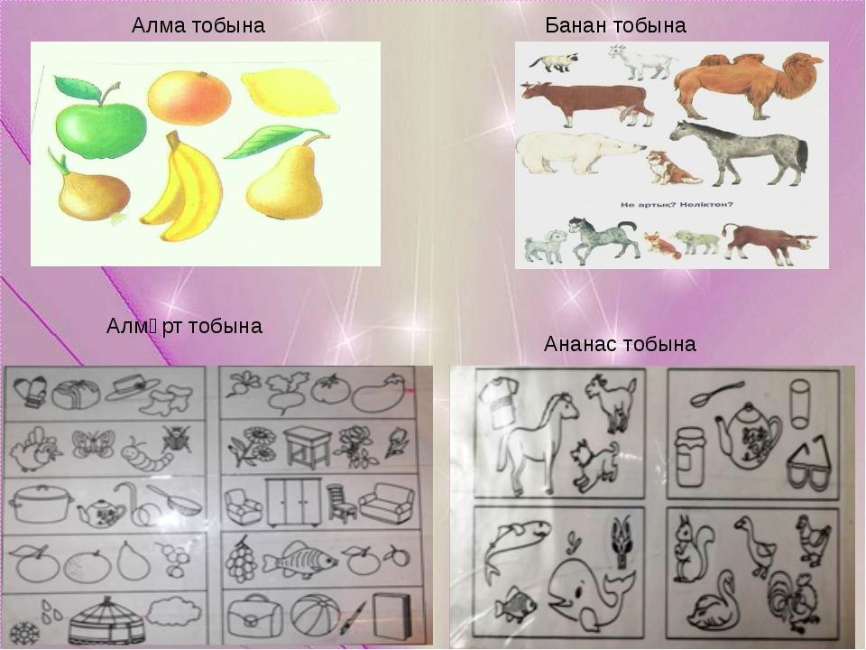 Алма тобына Банан тобына Алмұрт тобына Ананас тобына