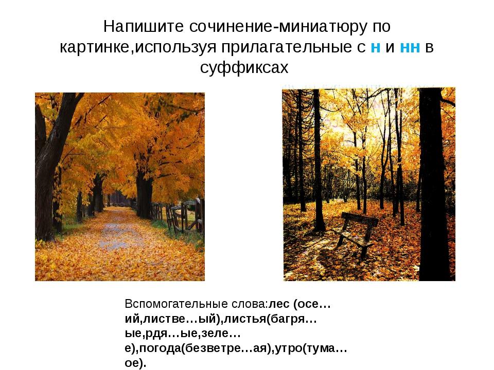 Напишите сочинение-миниатюру по картинке,используя прилагательные с н и нн в...