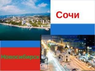 Сочи Новосибирск