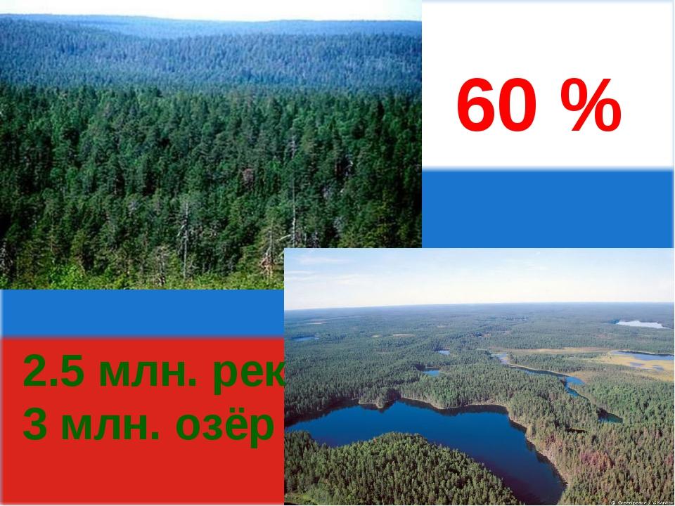60 % 2.5 млн. рек 3 млн. озёр