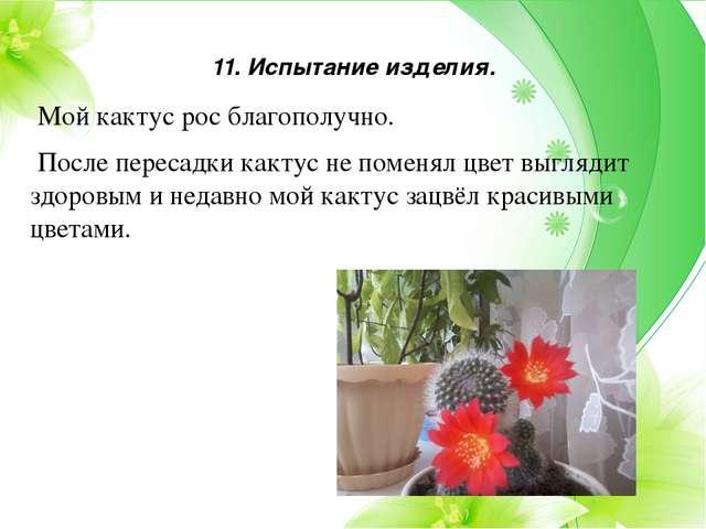 11. Испытание изделия. Мой кактус рос благополучно. После пересадки кактус не...