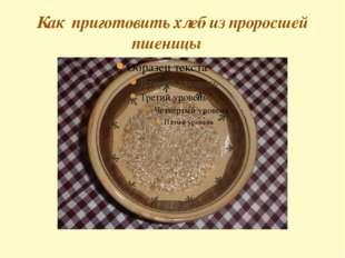 Как приготовить хлеб из проросшей пшеницы