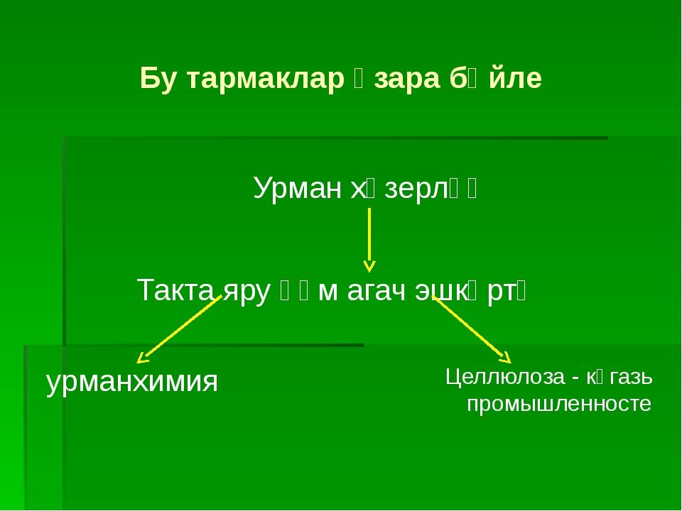 Урман хәзерләү Такта яру һәм агач эшкәртү урманхимия Целлюлоза - кәгазь промы...