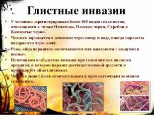 Глистные инвазии У человека зарегистрировано более 400 видов гельминтов, отно