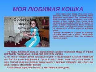 МОЯ ЛЮБИМАЯ КОШКА Мою кошку зовут Маша. Она у нас очень красивая, голубая, в