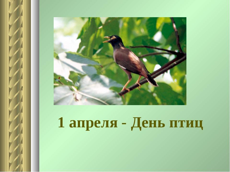 1 апреля - День птиц