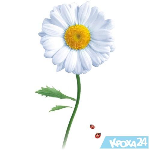 hello_html_4373d859.jpg