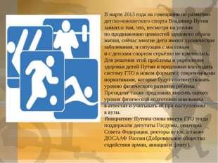 Вмарте 2013 года насовещании поразвитию детско-юношеского спорта Владимир