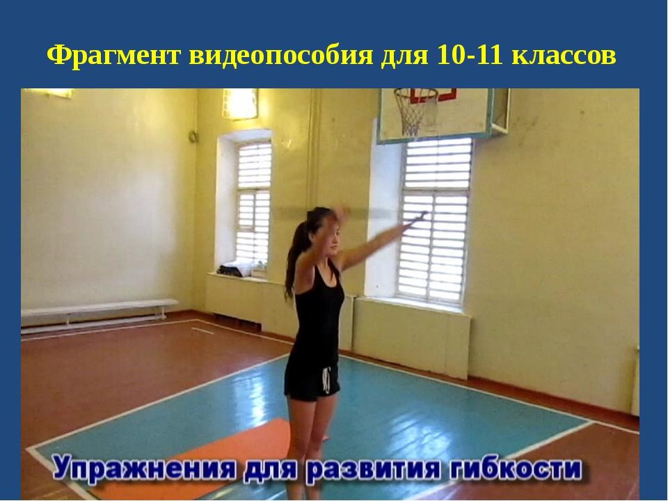 Фрагмент видеопособия для 10-11 классов
