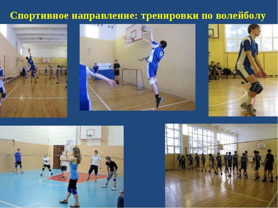 Спортивное направление: тренировки по волейболу