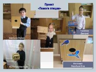 Проект «Помоги птицам» Щербаков Матвей Молчанова Виктория Ажнакина Алина Гусе