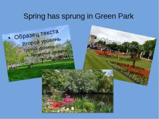 Spring has sprung in Green Park