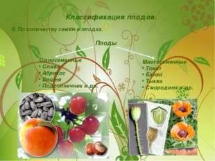 Классификация плодов. II. По количеству семян в плодах. Плоды Односемянные Сл