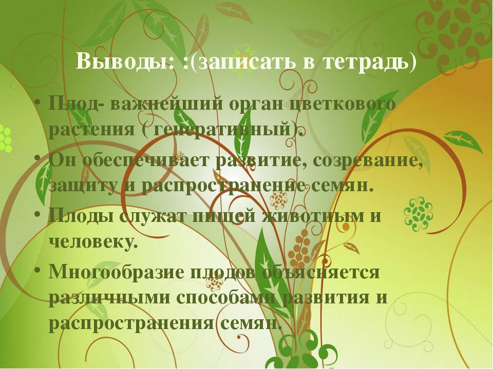 Выводы: :(записать в тетрадь) Плод- важнейший орган цветкового растения ( ген...